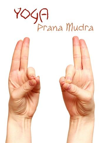 Prana-Mudra-